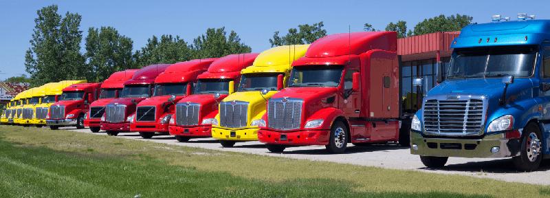garantia vehiculo trabajo