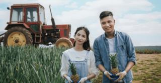 vehiculos agrícolas